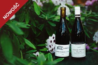 Kurs: Burgundia