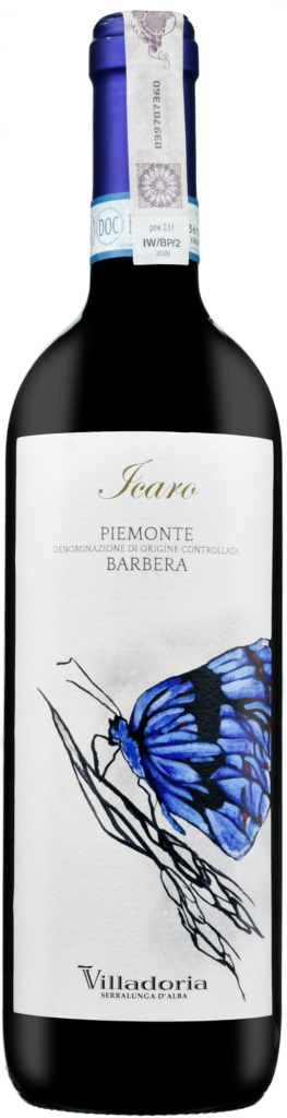 Wino Villadoria Icaro Barbera Piemonte DOC 2019