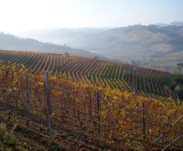 Program 12/12 – odwiedziny Villadoria