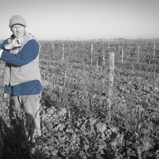 Winiarz z Doliny Loary