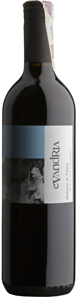 Wino Coloma Evandria Extremadura VdlT