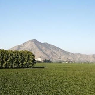 Dolina Maipo w Chile