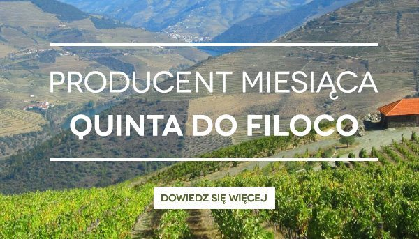 Degustacje win Quinta do Filoco
