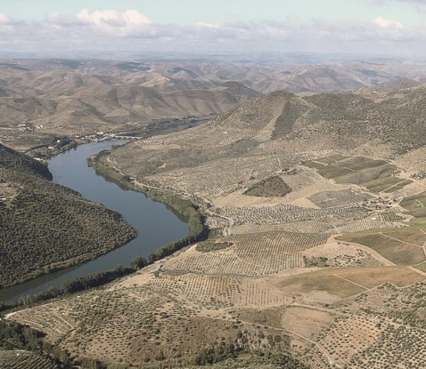 Montes Ermos