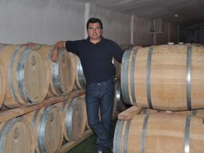 vegalfaro winiarz
