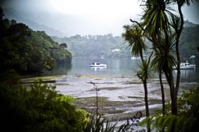 Nowa Zelandia widoki