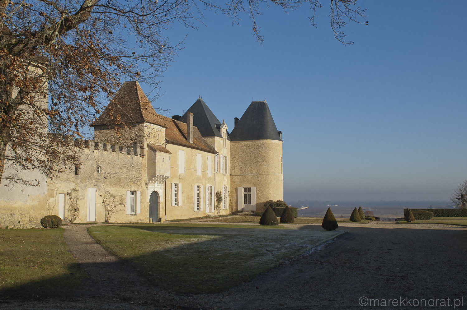 Chateuax D'Yquem