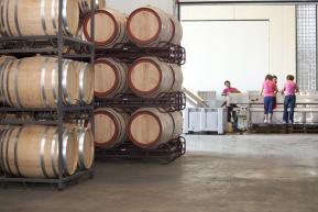 Beczki z winem w Hiszpanii