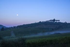 Winnice nocą Toskania