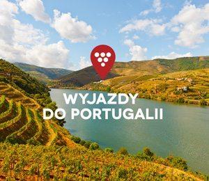 MISJA WINO: wakacje na winnym szlaku Portugalii!