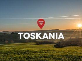 MISJA WINO: wyjazd do Toskanii