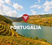 MISJA WINO: wyjazd do Portugalii
