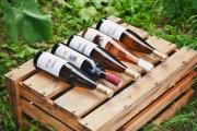 Między sztuką anauką. Dlaczego polskie wino jest drogie?