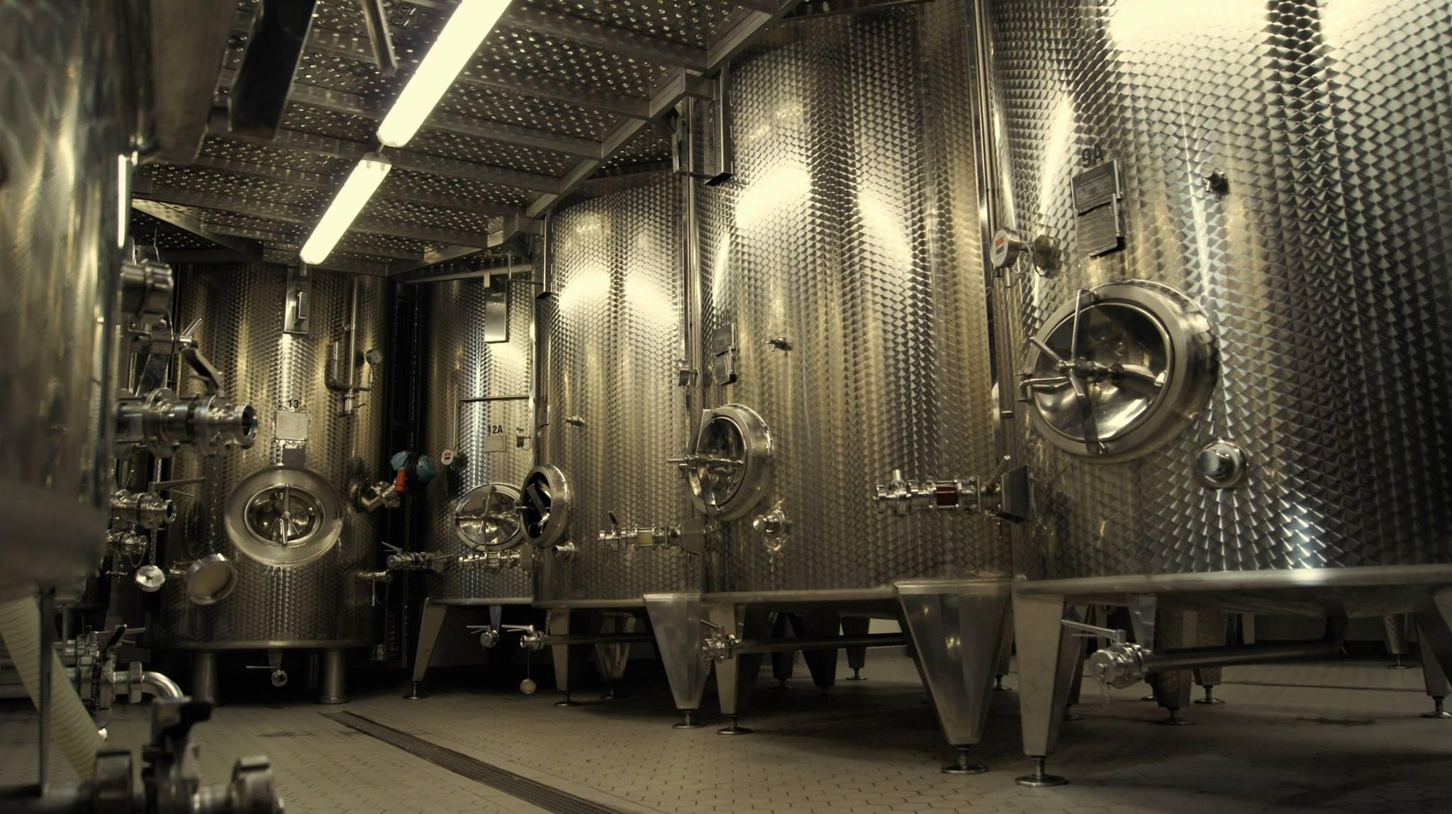 Wytwarzanie wina