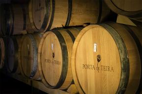 Barbosa winnice