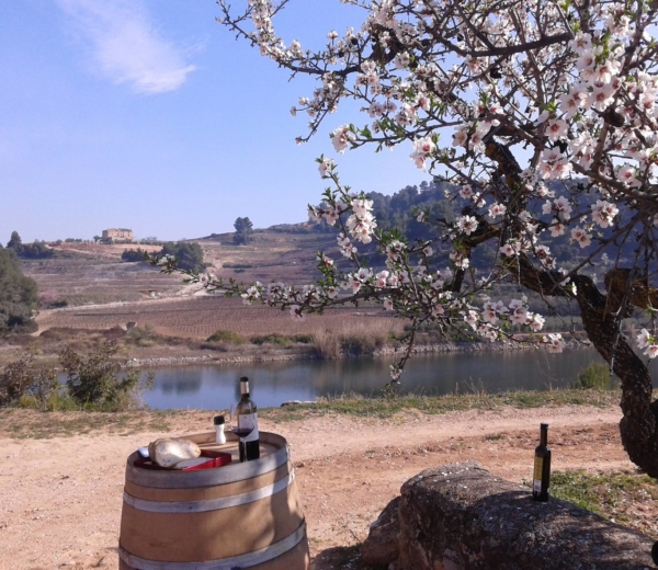 Marek Kondrat zpodróży: wiosną wHiszpanii polecam Montsant