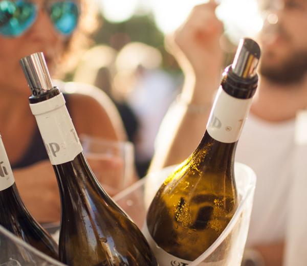 Shalom Izrael! Kraina Starego iNowego Świata winiarskiego