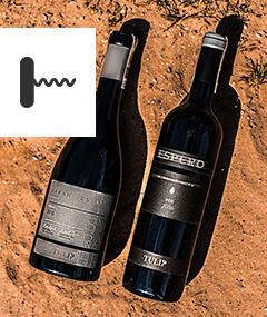 Degustacja w BARaWINO: Wina koszerne