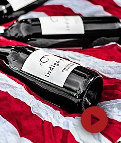 Webinar: Wina z Nowego Świata