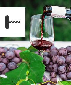 Od prosecco po amarone. Degustacja win włoskich w Bydgoszczy