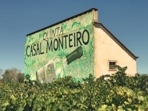 Zdjęcie z winnicy Casal Monteiro