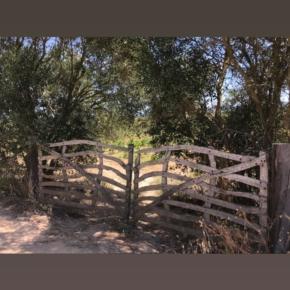Brama do winnicy 4 Kilos