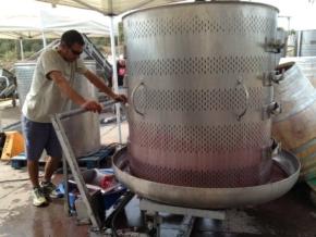 Jeden z etapów produkcji wina w winnicy 4 Kilos